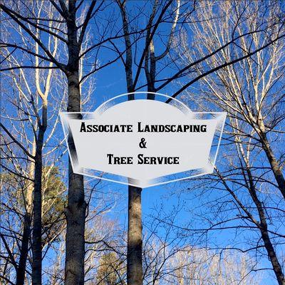 Avatar for Associate Landscaping & Tree Service LLC Raleigh, NC Thumbtack