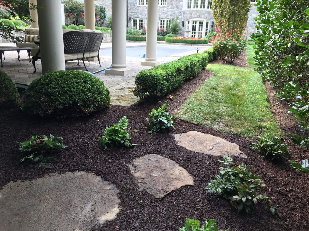 River jack  and natural steppingstone path with planting