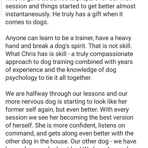 His dogs were aggressive with other dogs, not anymore!