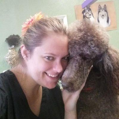 Avatar for Lavish Dog Spa