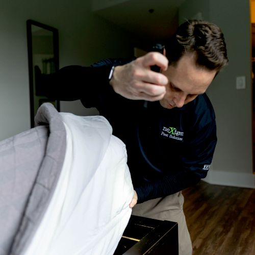 Bed Bug Inspection & Treatment