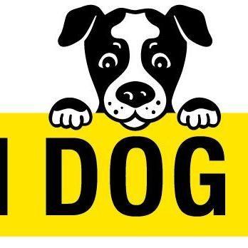 Caution Dog