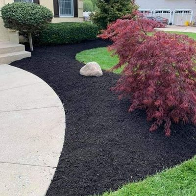 Avatar for Just Right Landscaping Sicklerville, NJ Thumbtack