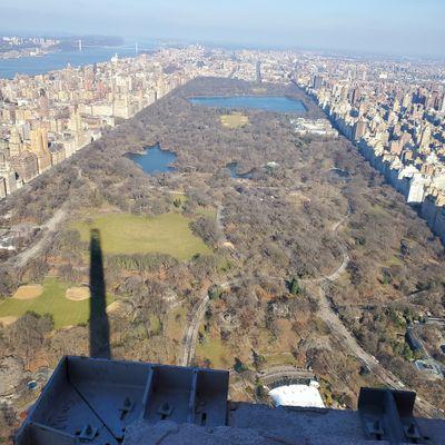 Avatar for L&Y  GREAT AMERICAN CONSTRUCTION Brooklyn, NY Thumbtack