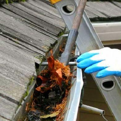 Avatar for A Plus Gutter and Drain LLC Columbus, OH Thumbtack