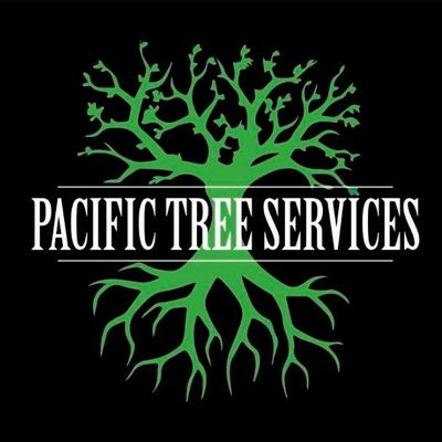 Avatar for Pacific Tree Services Auburn, WA Thumbtack
