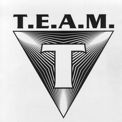 Avatar for T.E.A.M. Security Tempe, AZ Thumbtack