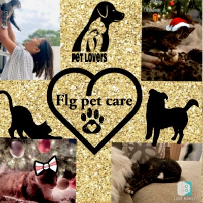 Avatar for Flg pet care