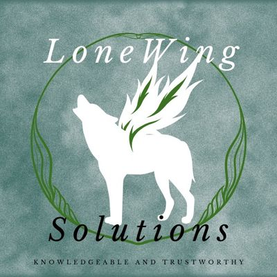 Avatar for LoneWing Solutions LLC