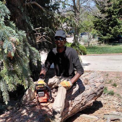 Avatar for That's How Cedar Do