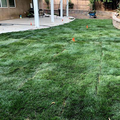 Avatar for Reeds Sprinkler Repair Upland, CA Thumbtack