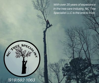 Avatar for NC Tree Specialist LLC Louisburg, NC Thumbtack