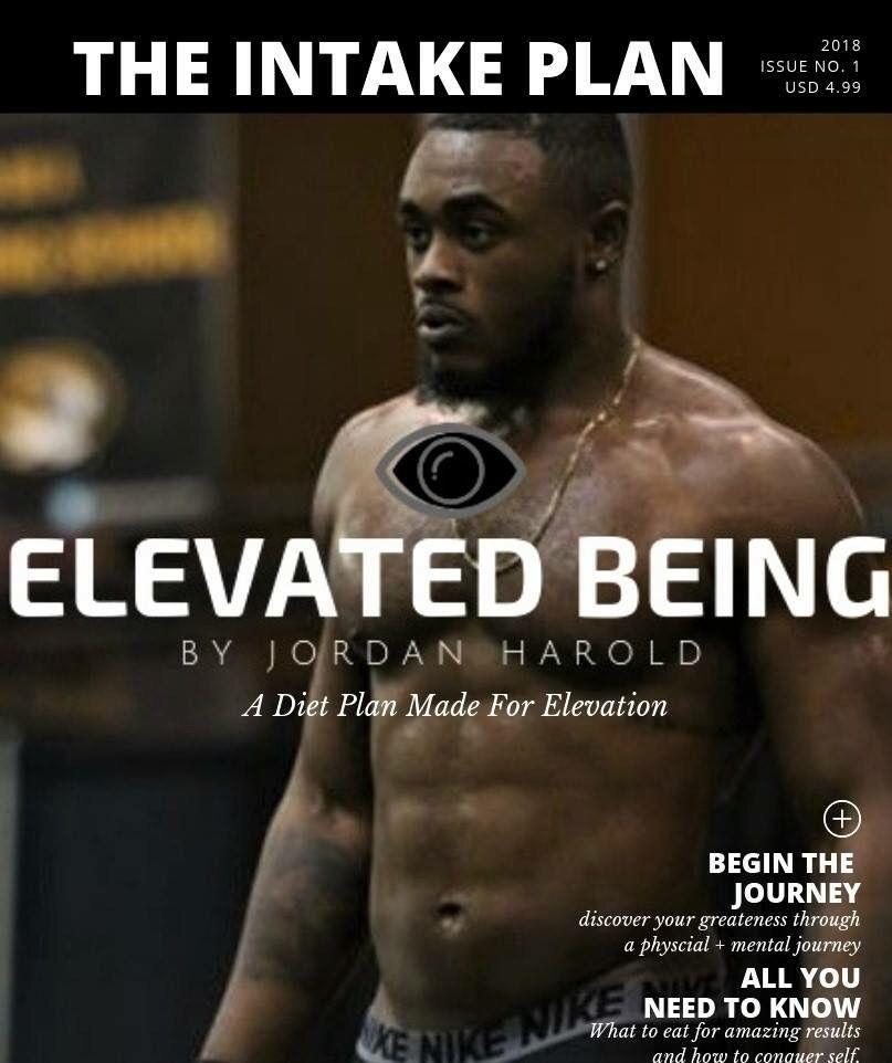 Elevated Being by Jordan Harold