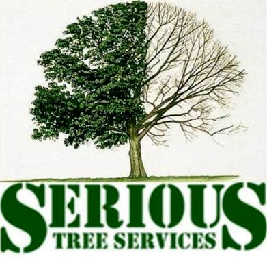 Avatar for Serious Tree Services