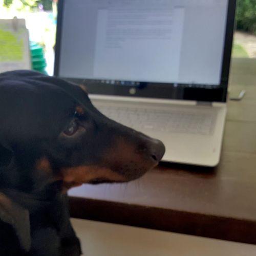 My little helper...