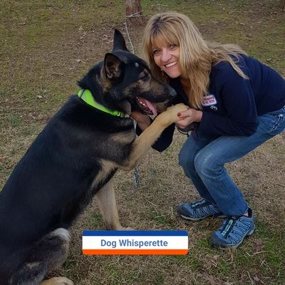 Avatar for Dog Whisperette Mobile Dog Behaviorist Chattanooga, TN Thumbtack