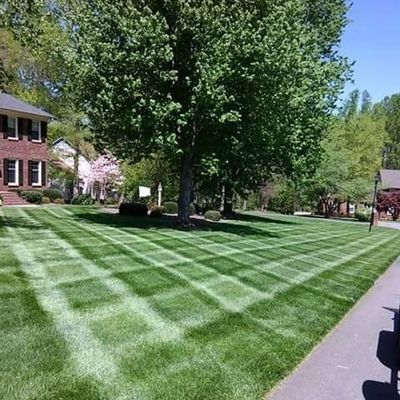 Avatar for Buena vista Lawn Care  and Hardscape Kernersville, NC Thumbtack