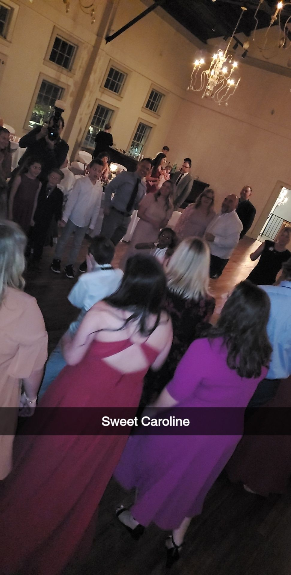 DJ -Wedding Reception