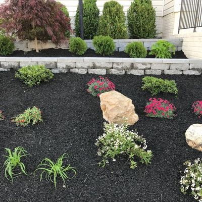 Avatar for Patricia Multiservices & landscapingINC Leesburg, VA Thumbtack