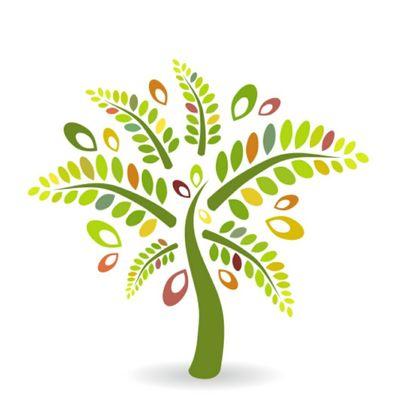 Avatar for Palm tree landscaping Orlando, FL Thumbtack