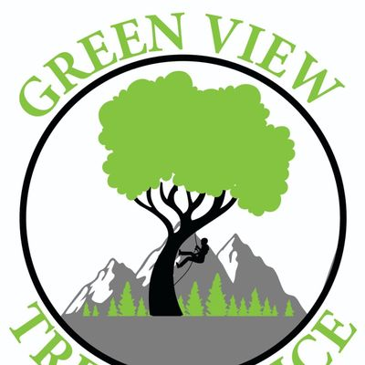 Avatar for green view tree service Concord, CA Thumbtack
