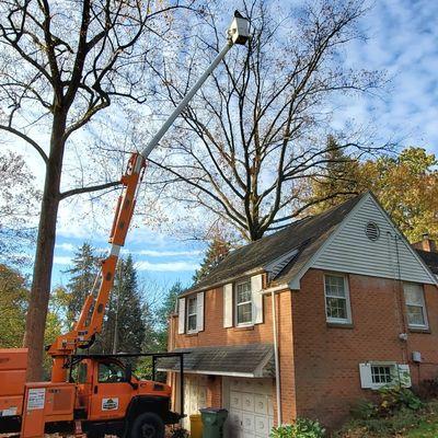 Avatar for Kline's Tree Service, LLC Grantville, PA Thumbtack