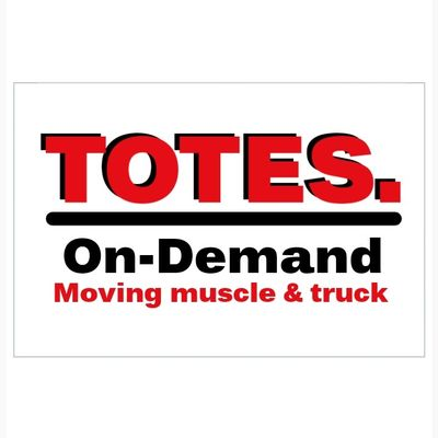 Avatar for TOTES. ON-DEMAND MOVING Concord, NC Thumbtack