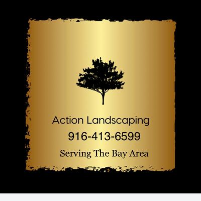 Avatar for Action Landscaping San Jose, CA Thumbtack