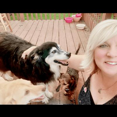 Avatar for Cindi's Petsitting Knoxville, TN Thumbtack