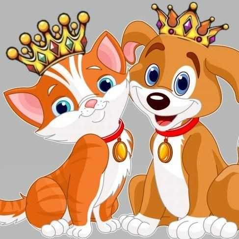 Reigning Cats and Dogs Pet Sitting Service LLC