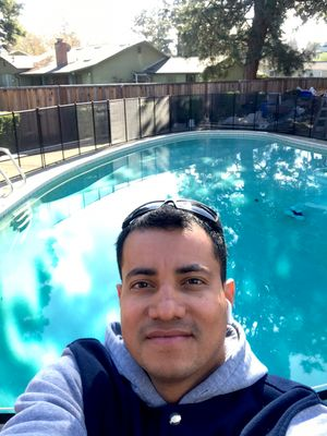 Avatar for Optimum Pool Service Mountain View, CA Thumbtack