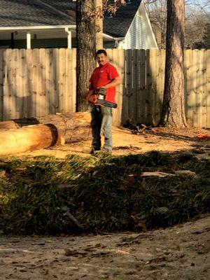 Avatar for Emerald tree services Alabaster, AL Thumbtack