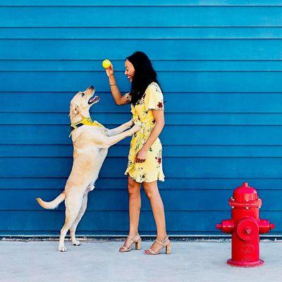 Avatar for Chelsea's Canines Austin, TX Thumbtack