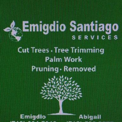 Avatar for EMIGDIO SANTIAGO SERVICE
