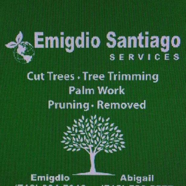 EMIGDIO SANTIAGO SERVICE