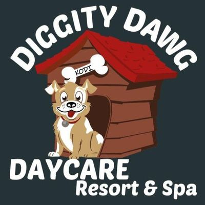 Avatar for Diggity Dawg Daycare Resort and Spa Wernersville, PA Thumbtack