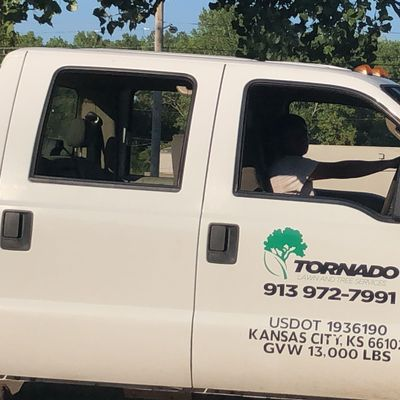 Avatar for Tornado tree services