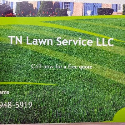 Avatar for TN Lawn Service LLC