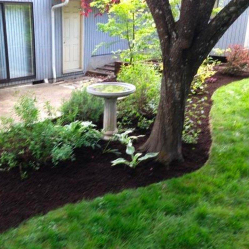 Parish Lawn &Tree