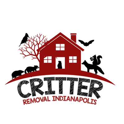 Avatar for Critter Removal Indianapolis