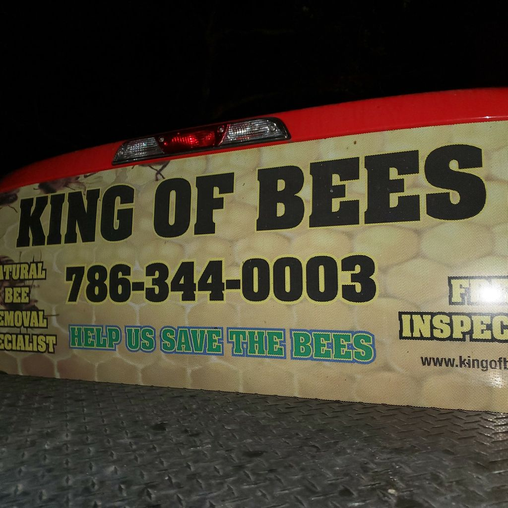 King of bees Natural Bee removal