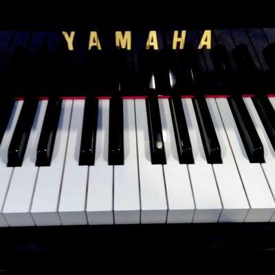 Avatar for E's Piano Tuning