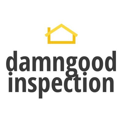 Avatar for Damngood Inspection