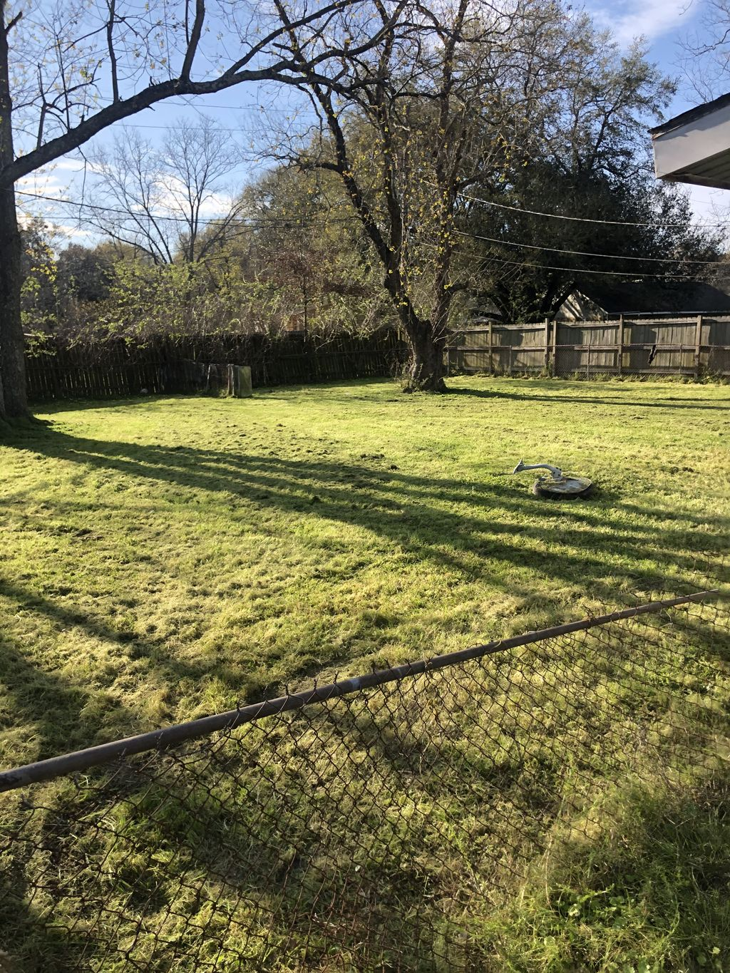 Lawn mowing and trimming