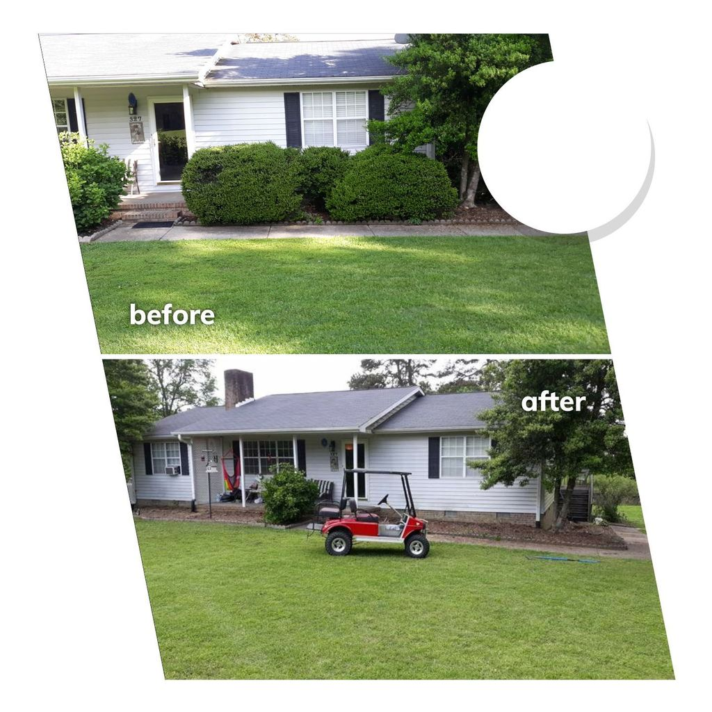 Basic shrub removal