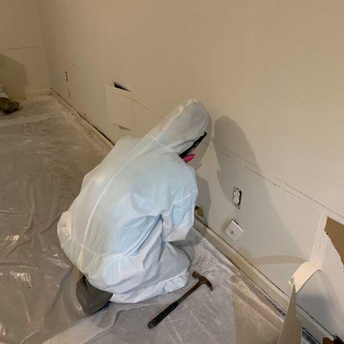 Mold Remediation basement project