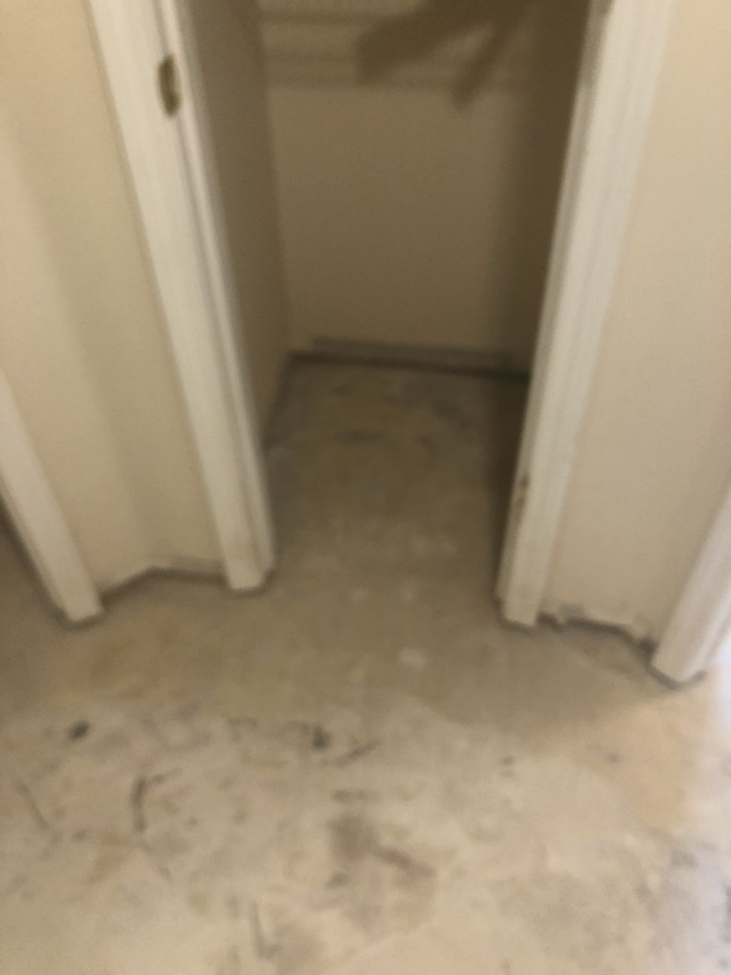 Removal and Floor Installation  - Jacksonville 2020