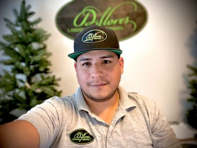 Avatar for D. Flores Landscape Services