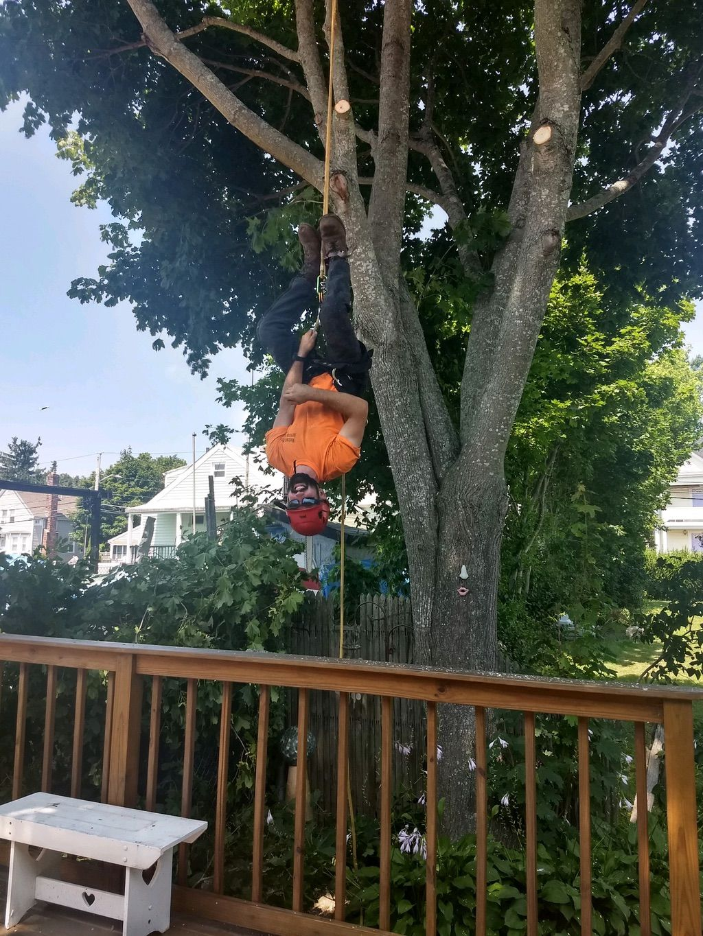 Workman Tree Service & More