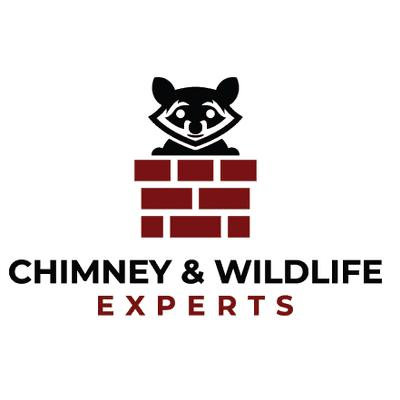 Avatar for Chimney Wildlife Experts